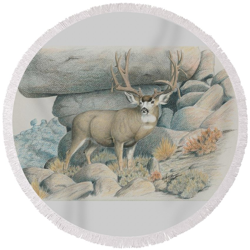Mule Deer Round Beach Towel featuring the drawing Boulder Buck by Darcy Tate