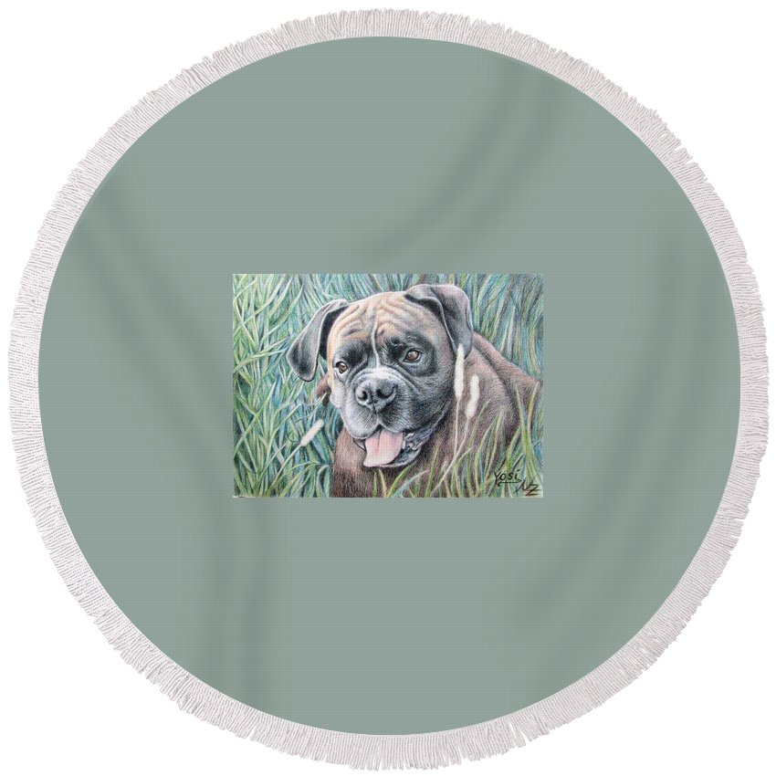 Dog Round Beach Towel featuring the drawing Boxer Yosi by Nicole Zeug