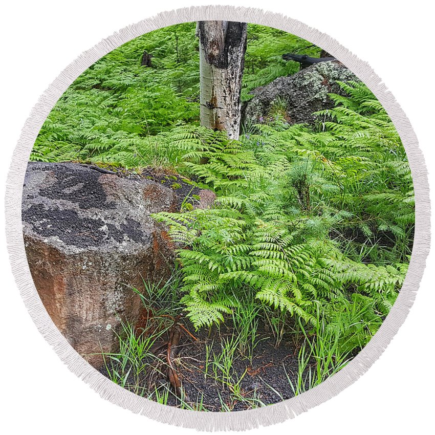 Fern Round Beach Towel featuring the photograph Bracken Fern Meadow by Jim Thomas