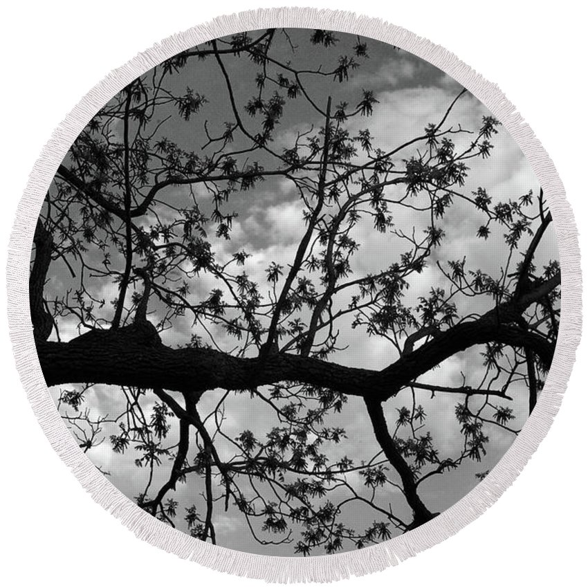 Tree Round Beach Towel featuring the photograph Branch Patterns by John Randolph