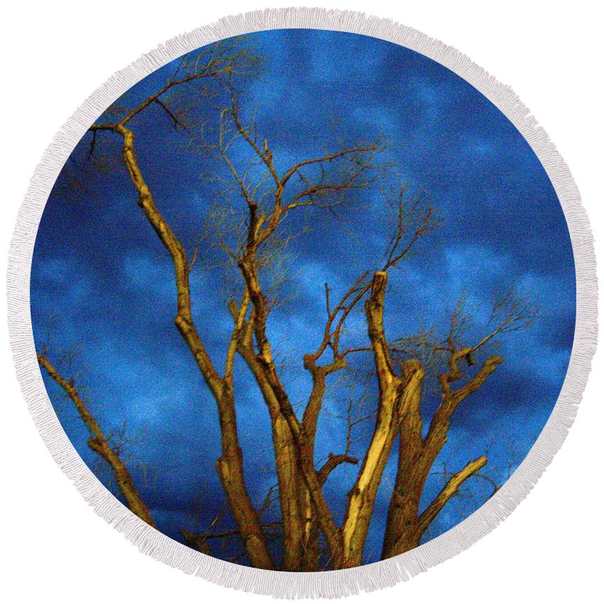 Blue Round Beach Towel featuring the photograph Branches Against Night Sky H by Heather Kirk