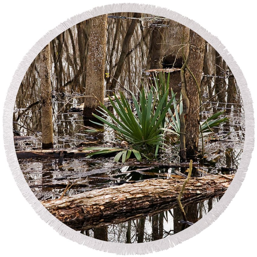 Nature Round Beach Towel featuring the photograph Brazos Bend Swamp In Winter by Louise Heusinkveld