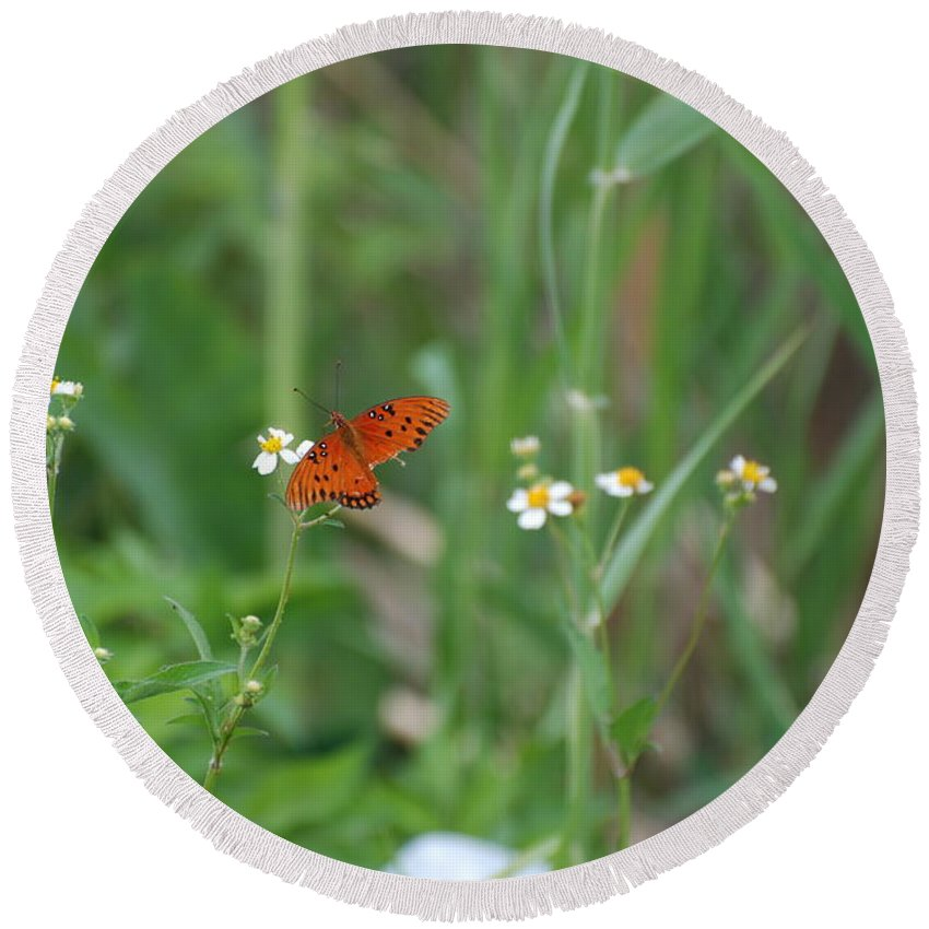 Butterfly Round Beach Towel featuring the photograph Broken Wing by Rob Hans