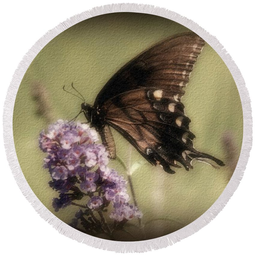 Butterfly Round Beach Towel featuring the photograph Brown And Beautiful by Sandy Keeton