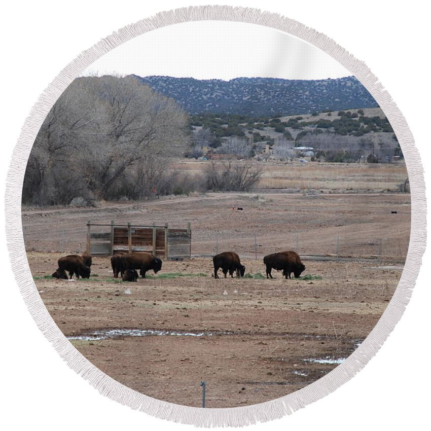 Buffalo Round Beach Towel featuring the photograph Buffalo New Mexico by Rob Hans
