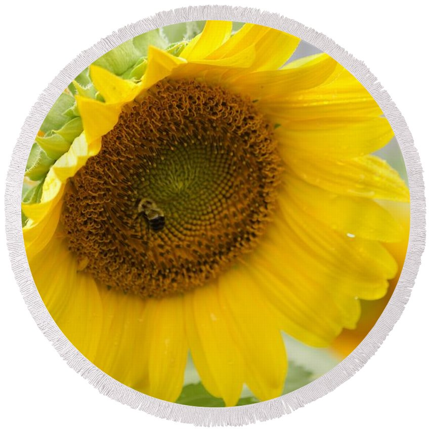 Flower Round Beach Towel featuring the photograph Bumble Bee And The Sunflower by Tiffany Erdman