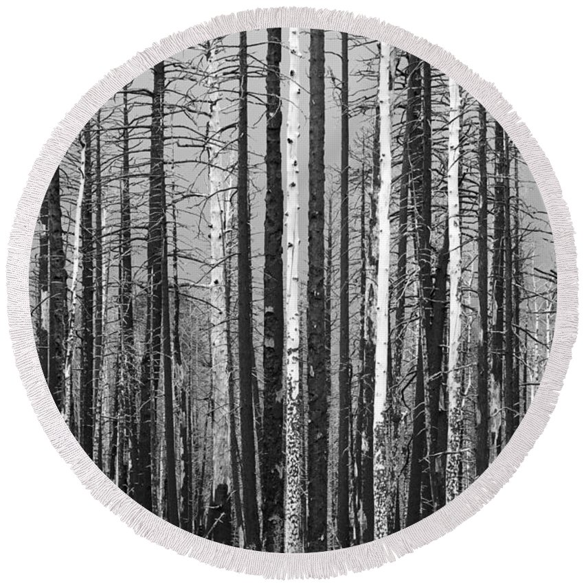 Burnt Round Beach Towel featuring the photograph Burnt Forest by James BO Insogna