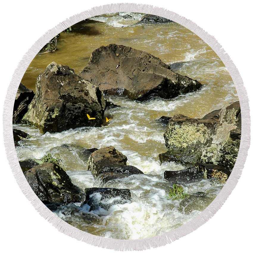 Landscape Round Beach Towel featuring the photograph Butterflies In Flight by Norman Johnson