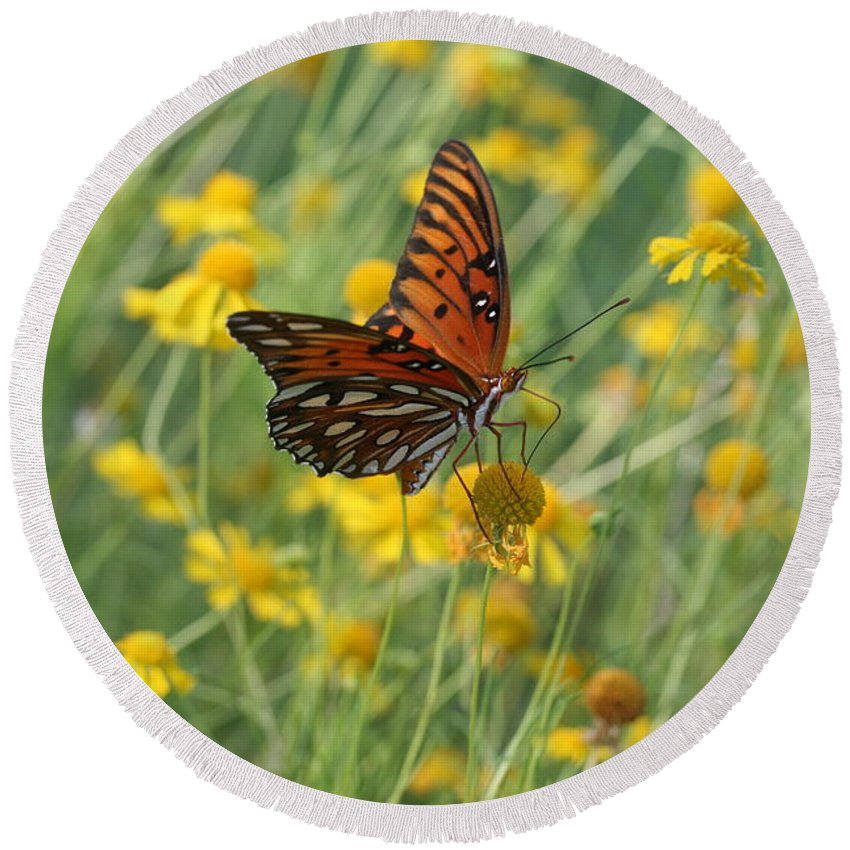 Butterfly Round Beach Towel featuring the photograph Butterfly And Flowers by Shirley Sykes Bracken