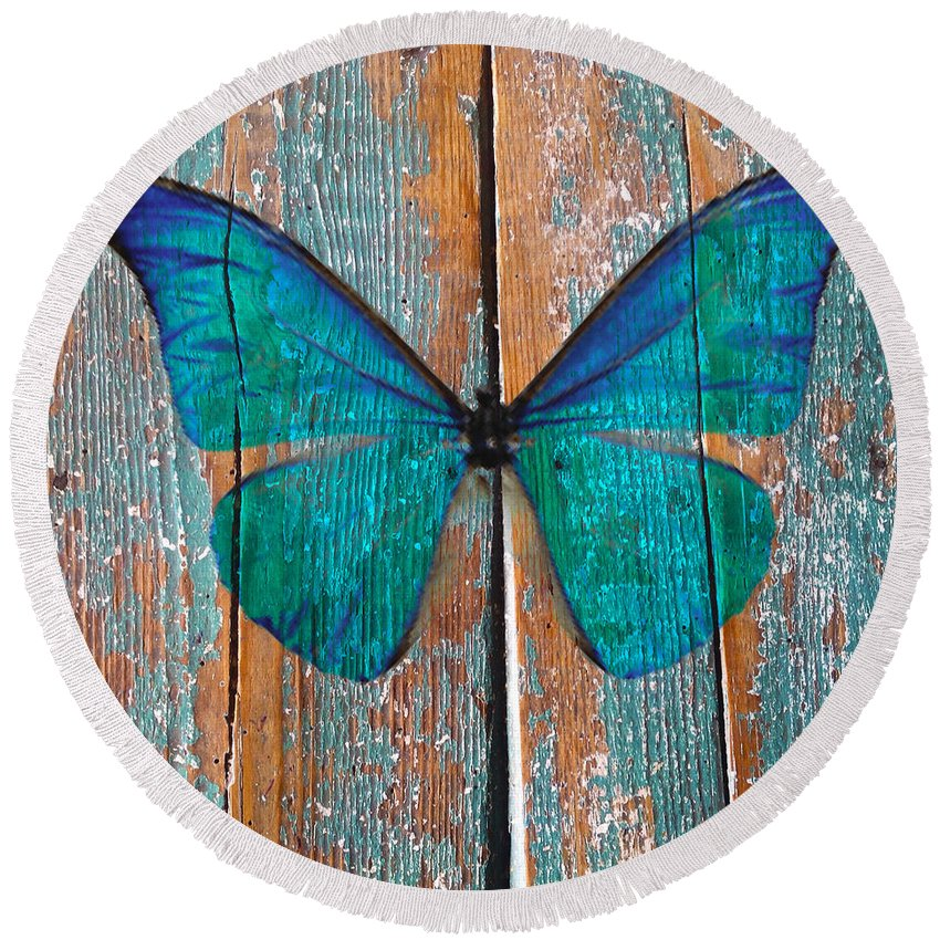 Butterfly Round Beach Towel featuring the photograph Butterfly Exhibition 1 by Anthony Robinson