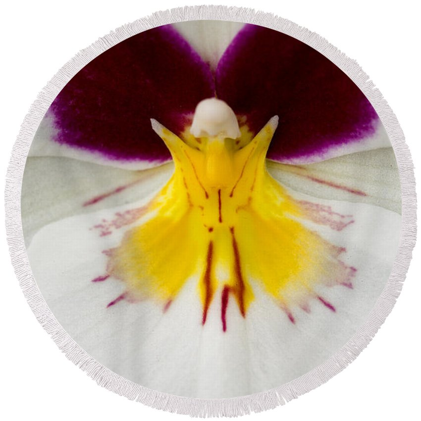 Orchid Round Beach Towel featuring the photograph Butterfly by Karen Ulvestad