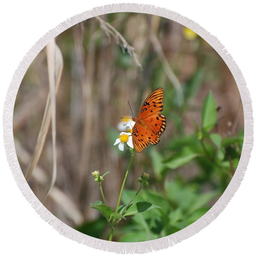 Nature Round Beach Towel featuring the photograph Butterfly On Flower by Rob Hans
