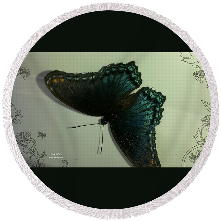 Butterflies Round Beach Towel featuring the photograph Butterfly On My Car by Maxine Billings