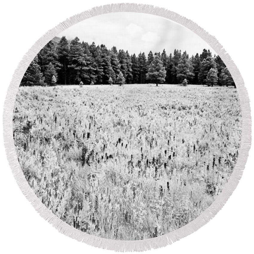 Meadow Round Beach Towel featuring the photograph Bw Meadow by Scott Sawyer