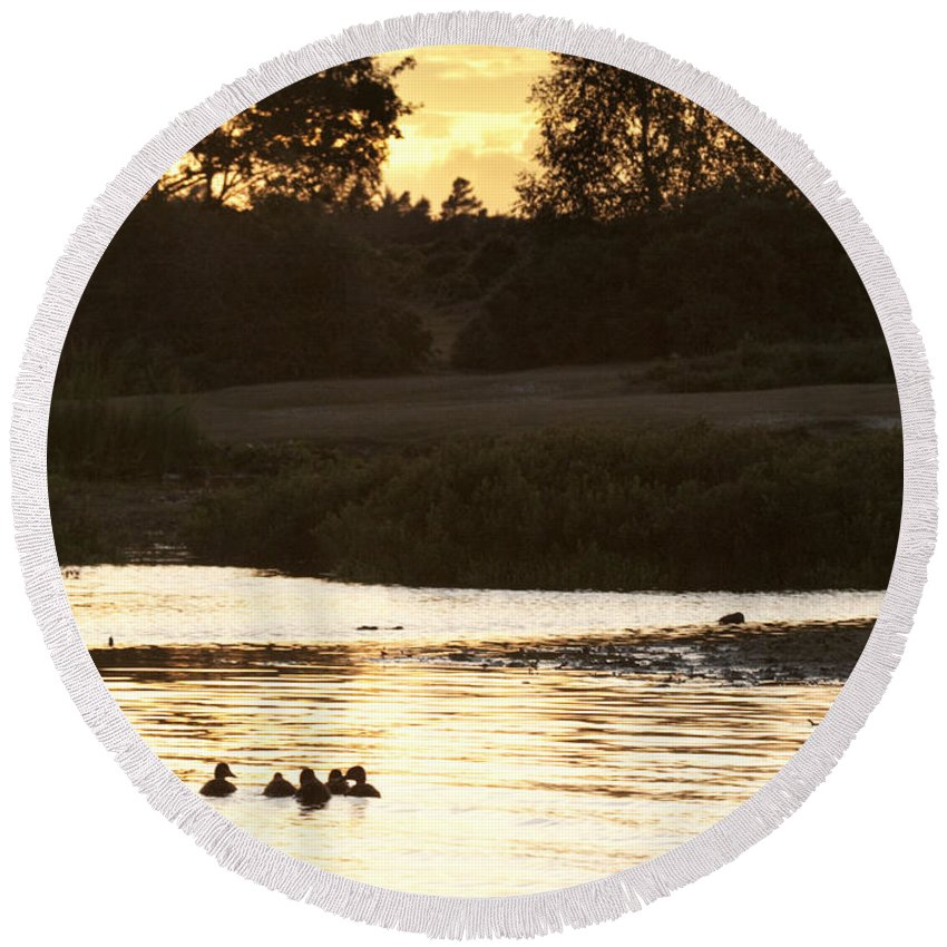 New Forest Round Beach Towel featuring the photograph By The Lake by Angel Ciesniarska