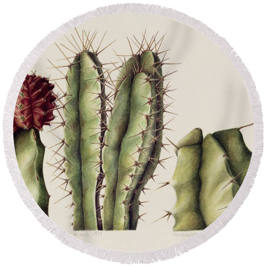 Botanical Round Beach Towel featuring the painting Cacti by Annabel Barrett