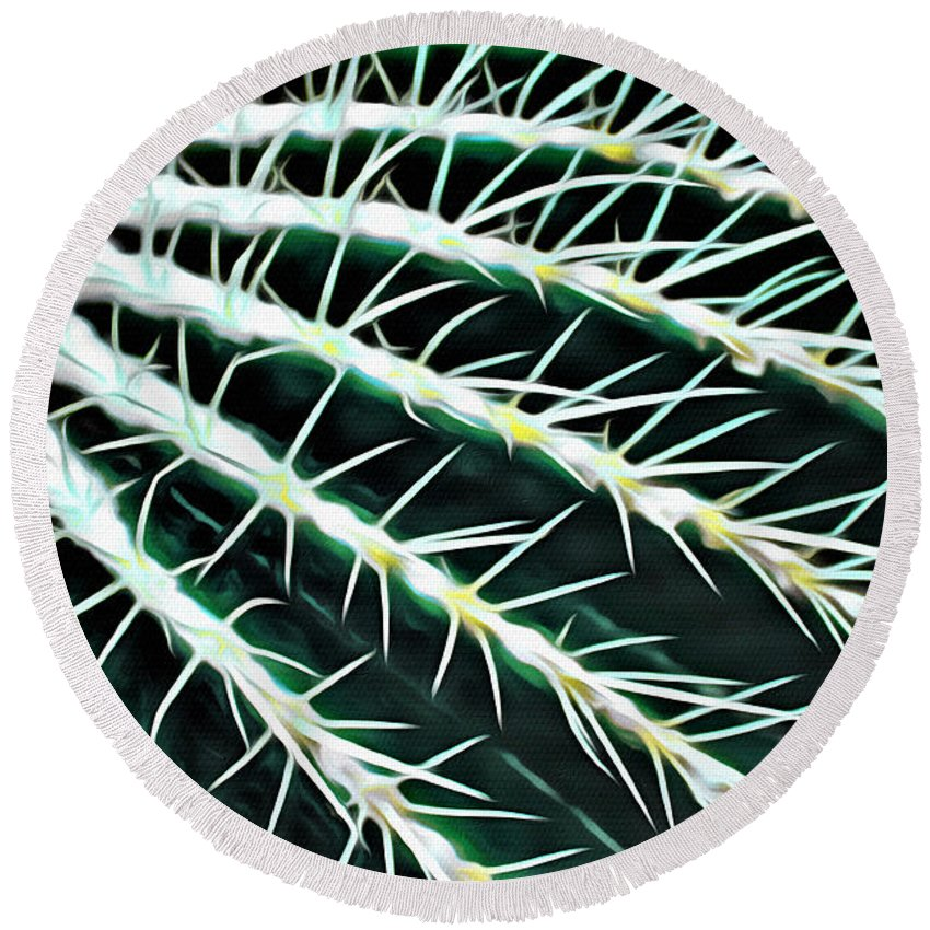 Cactus Round Beach Towel featuring the photograph Cactus Detail by Modern Art