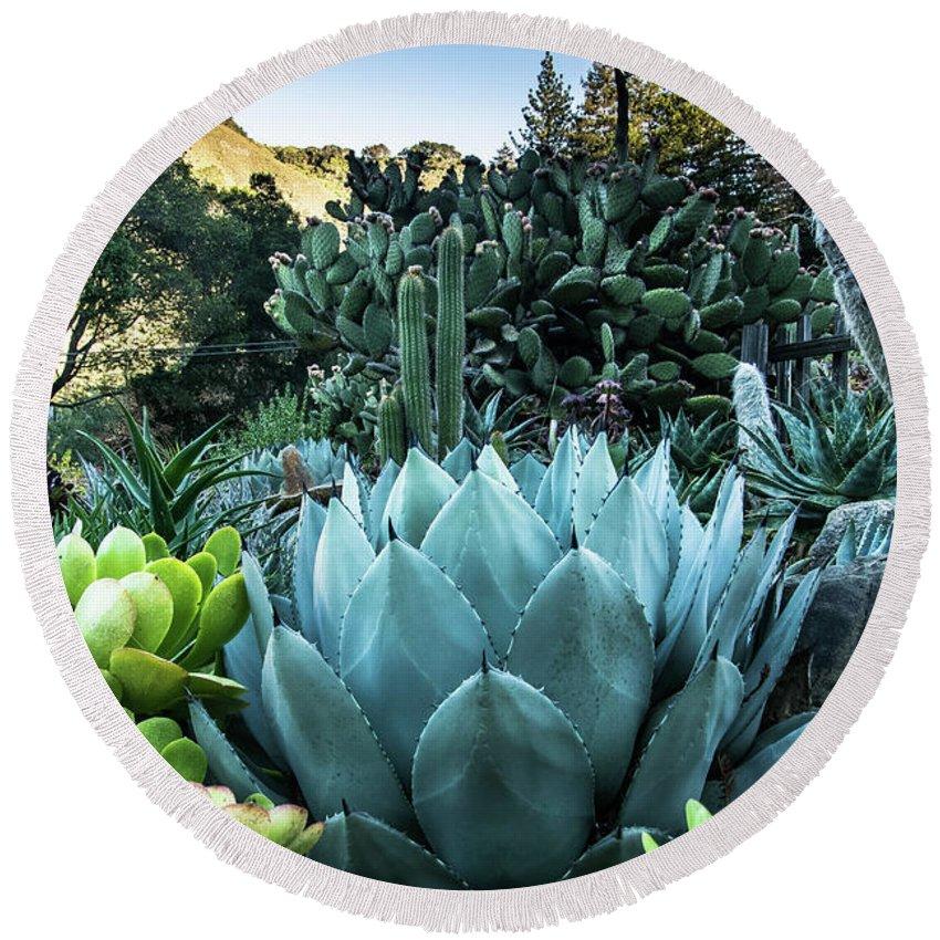 Tina Captured Moments Round Beach Towel featuring the photograph Cactus Garden by Tina Hailey
