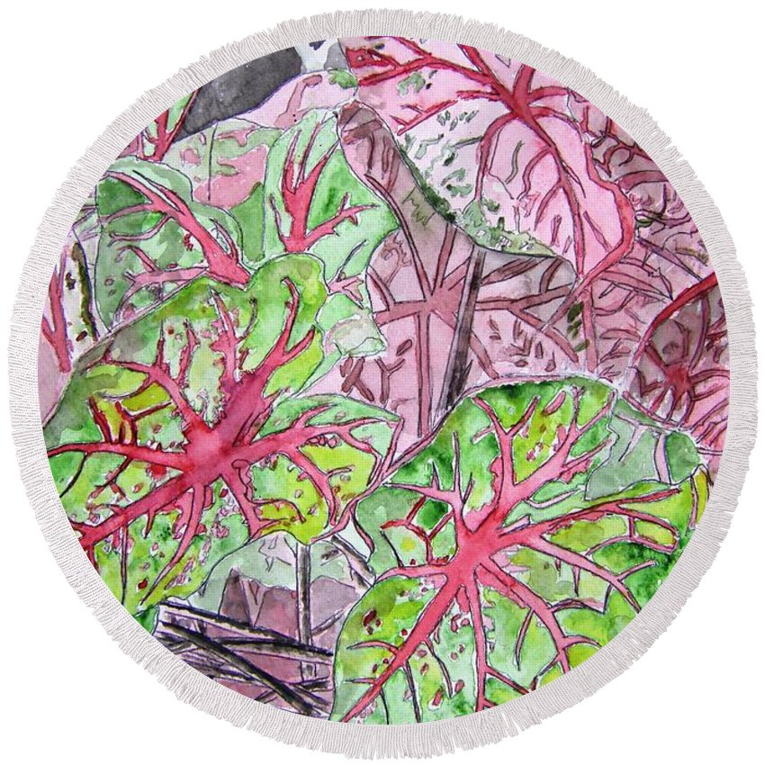 Watercolour Round Beach Towel featuring the painting Caladiums Tropical Plant Art by Derek Mccrea