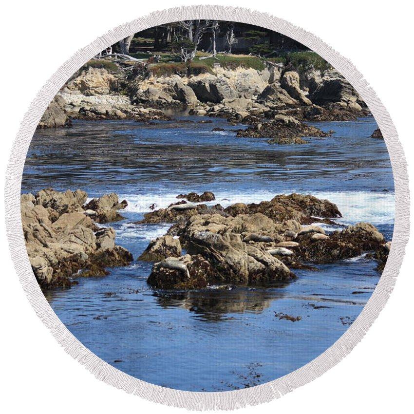 California Seaside Round Beach Towel featuring the photograph California Coast by Carol Groenen