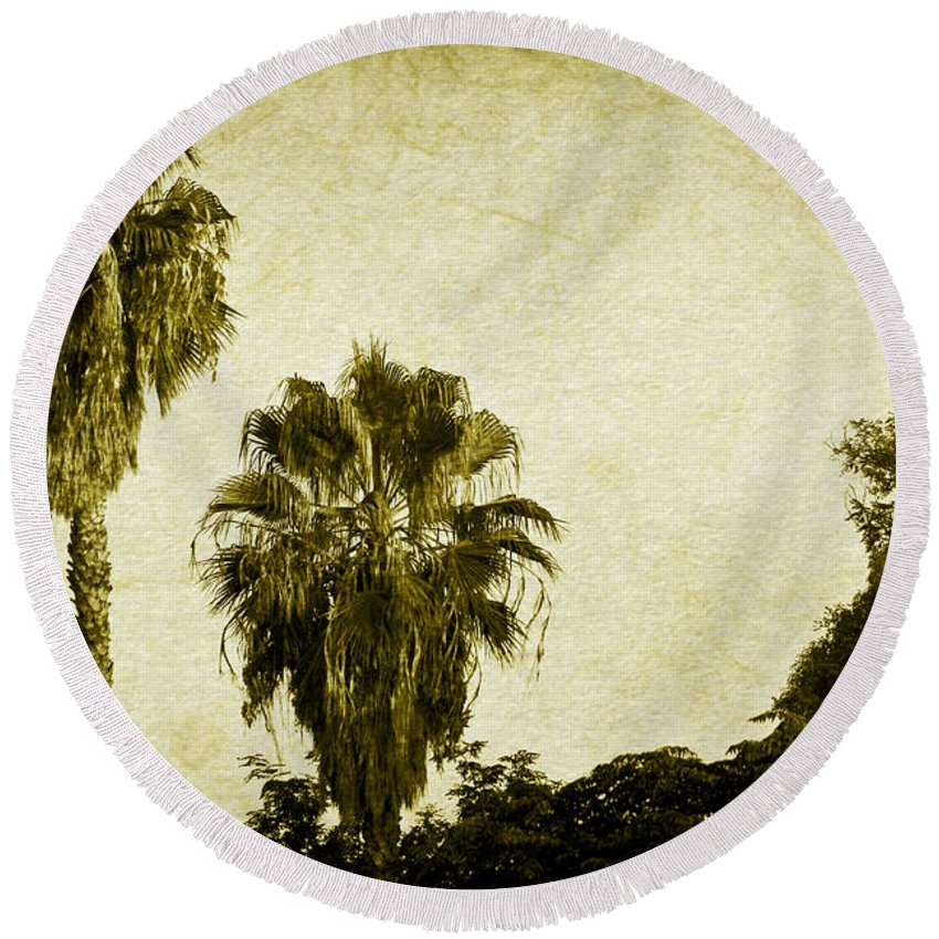 California Round Beach Towel featuring the photograph California Palms by Teresa Mucha