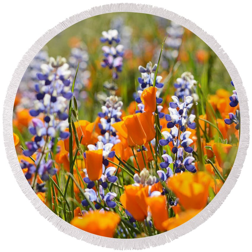 California Round Beach Towel featuring the photograph California Poppies And Lupine Wildflowers by Kyle Hanson