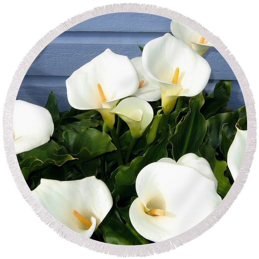 Calla Lilies Round Beach Towel featuring the photograph Calla Lilies- Oregon by Will Borden