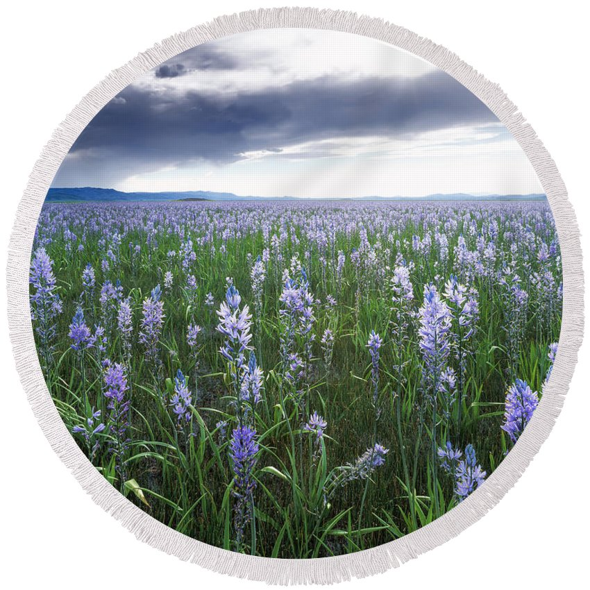 Beautiful Round Beach Towel featuring the photograph Camas Marsh 2 by Leland D Howard