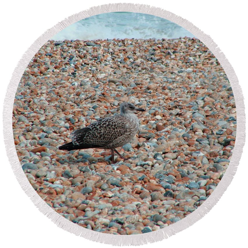 Camo Round Beach Towel featuring the photograph Camo Chick by Heather Lennox