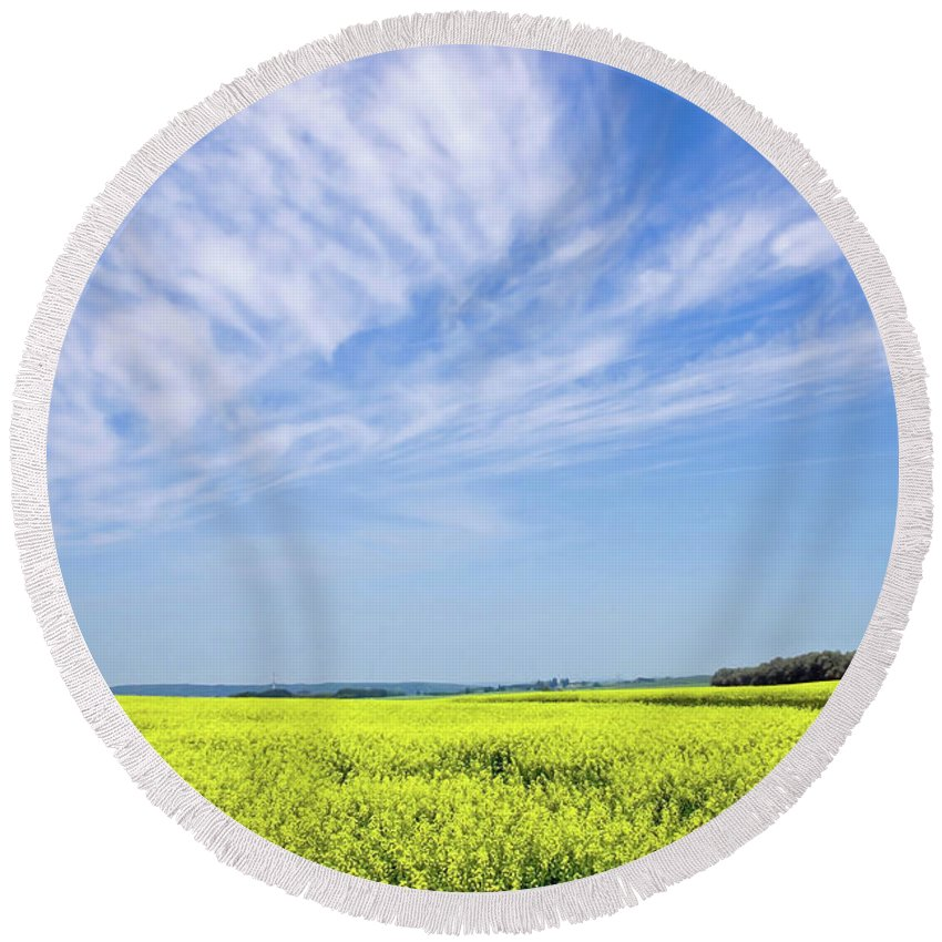 Prairie Round Beach Towel featuring the photograph Canola Blue by Keith Armstrong