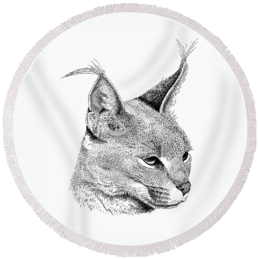 Caracl Round Beach Towel featuring the drawing Caracal by Scott Woyak