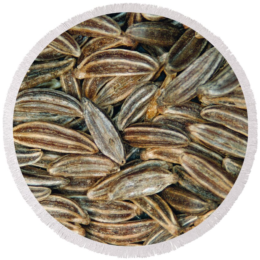 Caraway Round Beach Towel featuring the photograph Caraway Seeds by Scimat