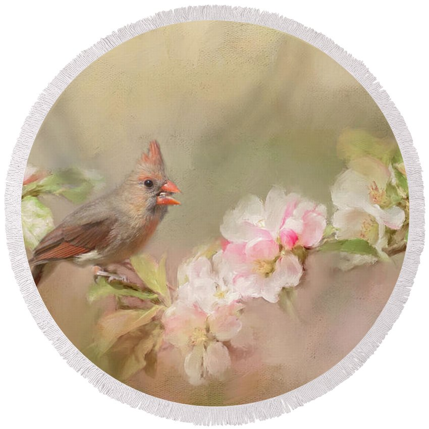 Bird Round Beach Towel featuring the photograph Cardinal Delight by Pam Holdsworth