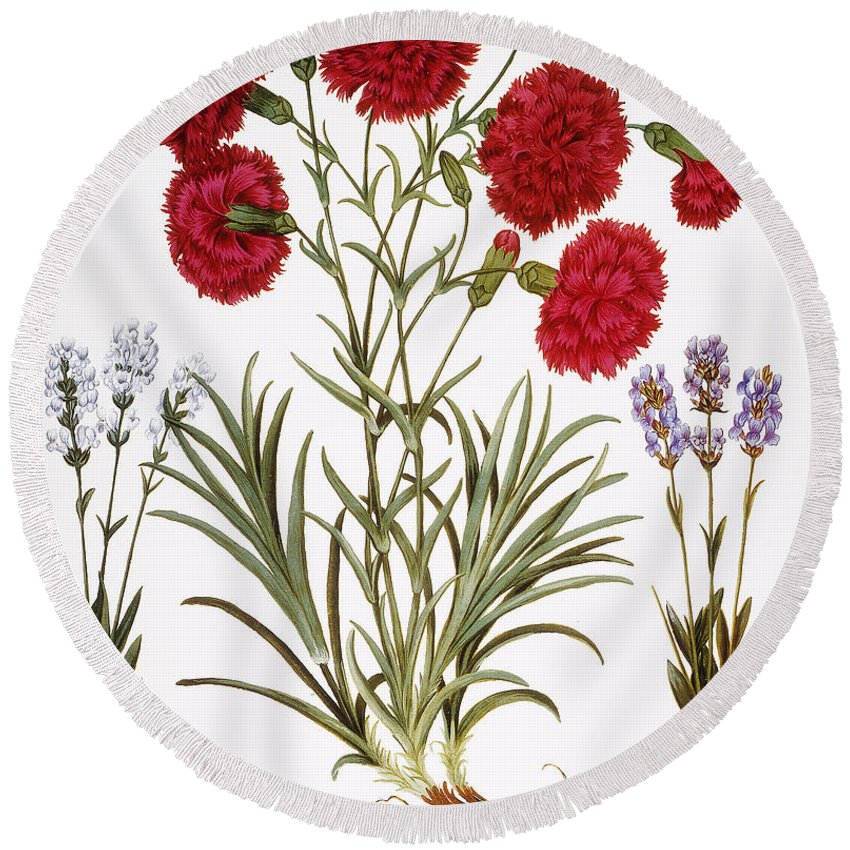 1613 Round Beach Towel featuring the photograph Carnation & Lavender, 1613 by Granger