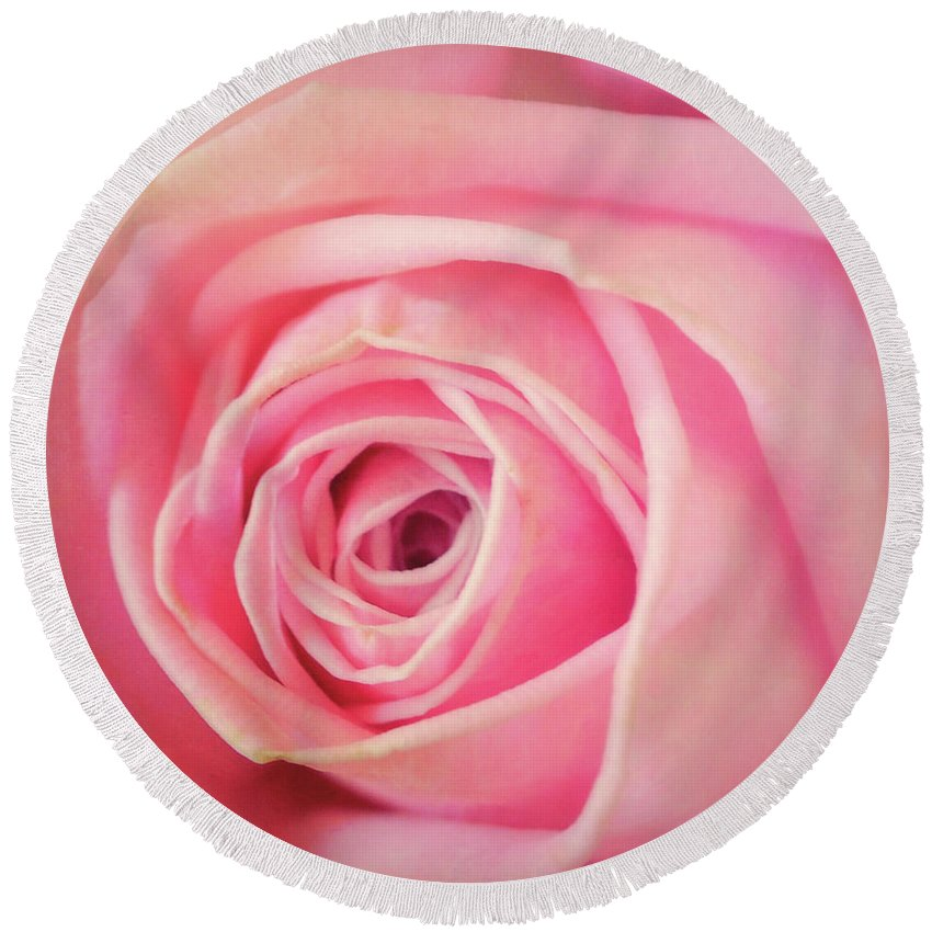 Pink Round Beach Towel featuring the photograph Carolina Rose by JAMART Photography