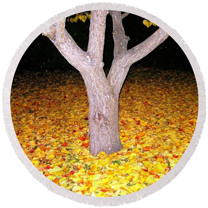 Apricot Leaves Round Beach Towel featuring the photograph Carpet Of Leaves by Will Borden
