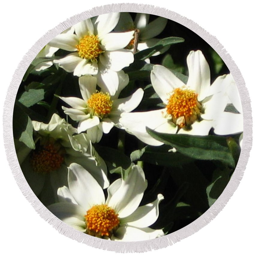 Floral Round Beach Towel featuring the photograph Cascade Of White Flowers by Line Gagne