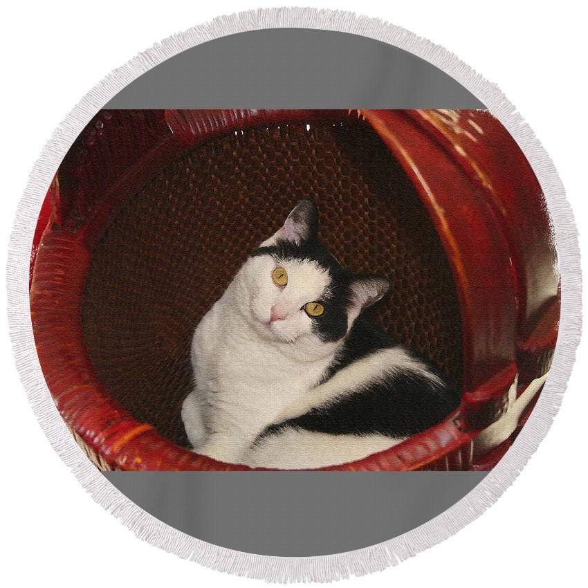 Cat Round Beach Towel featuring the photograph Cat In A Basket by Margie Wildblood