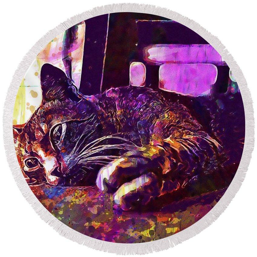 Cat Round Beach Towel featuring the digital art Cat Kitten Kitty Feline Domestic by PixBreak Art