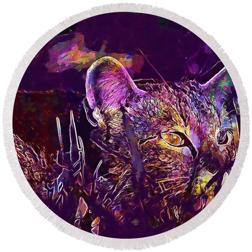 Cat Round Beach Towel featuring the digital art Cat Kitten Mieze Tiger Cat by PixBreak Art