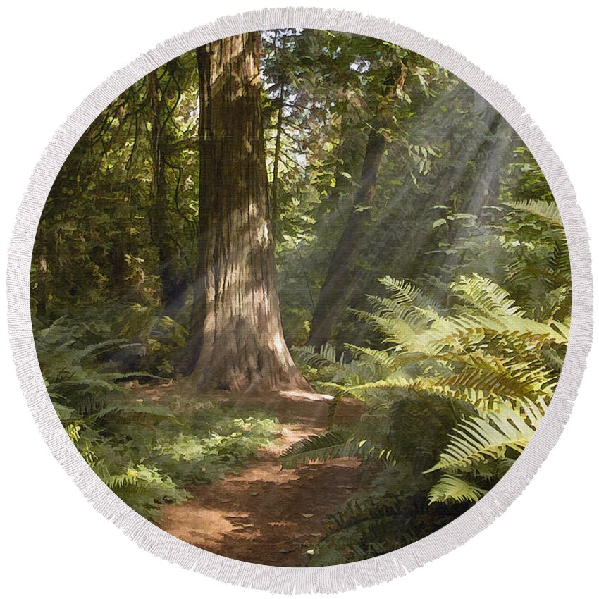 Nature Round Beach Towel featuring the photograph Cedar Path by Sharon Foster