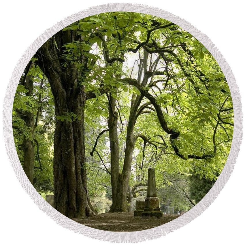 Cemetery Round Beach Towel featuring the photograph Cemetery Trees 1 by Sara Stevenson