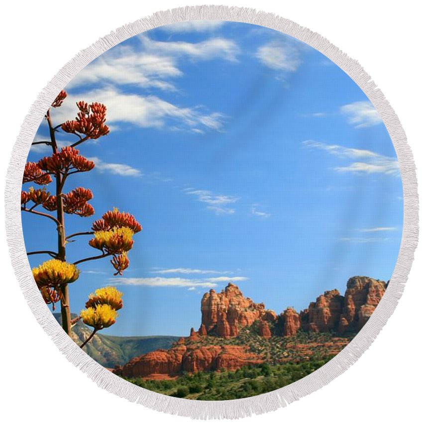 Arizona Round Beach Towel featuring the photograph Century Bloom by Miles Stites