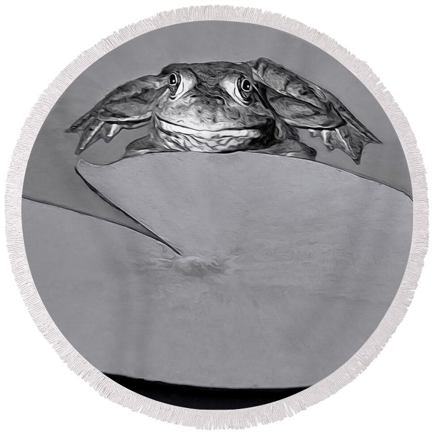 Frog Round Beach Towel featuring the photograph Checking It Out by Mitch Spence