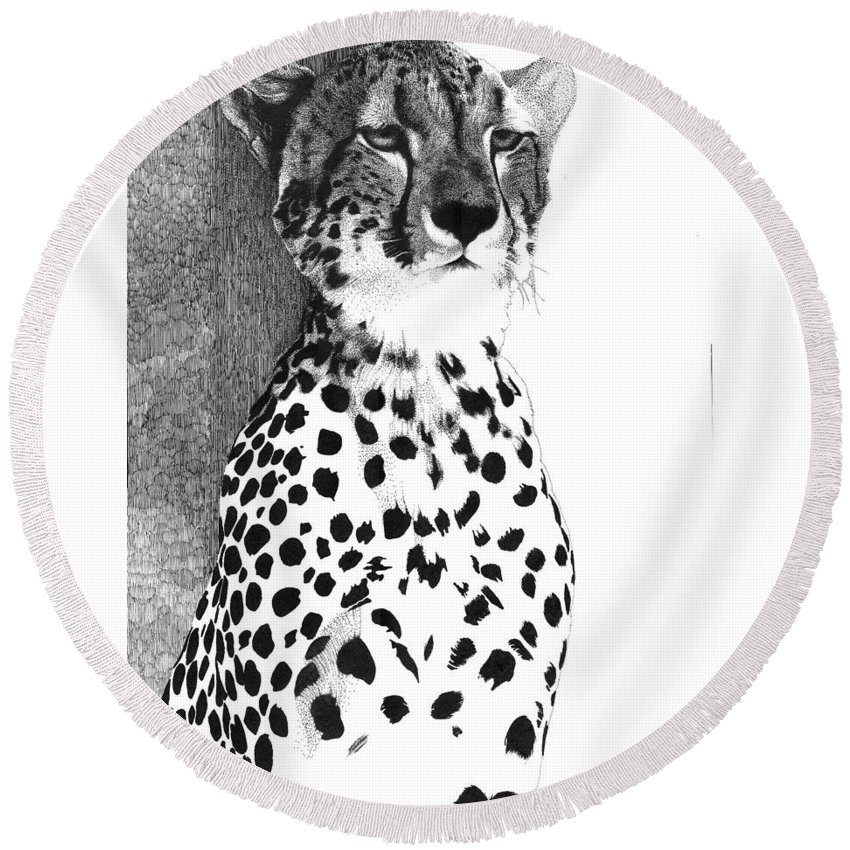 Cheetah Round Beach Towel featuring the drawing Cheetah by Pat Huggins