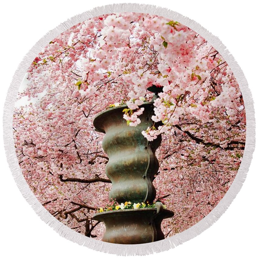 Cherry Round Beach Towel featuring the photograph Cherry Blossom In Stockholm by Tamara Sushko