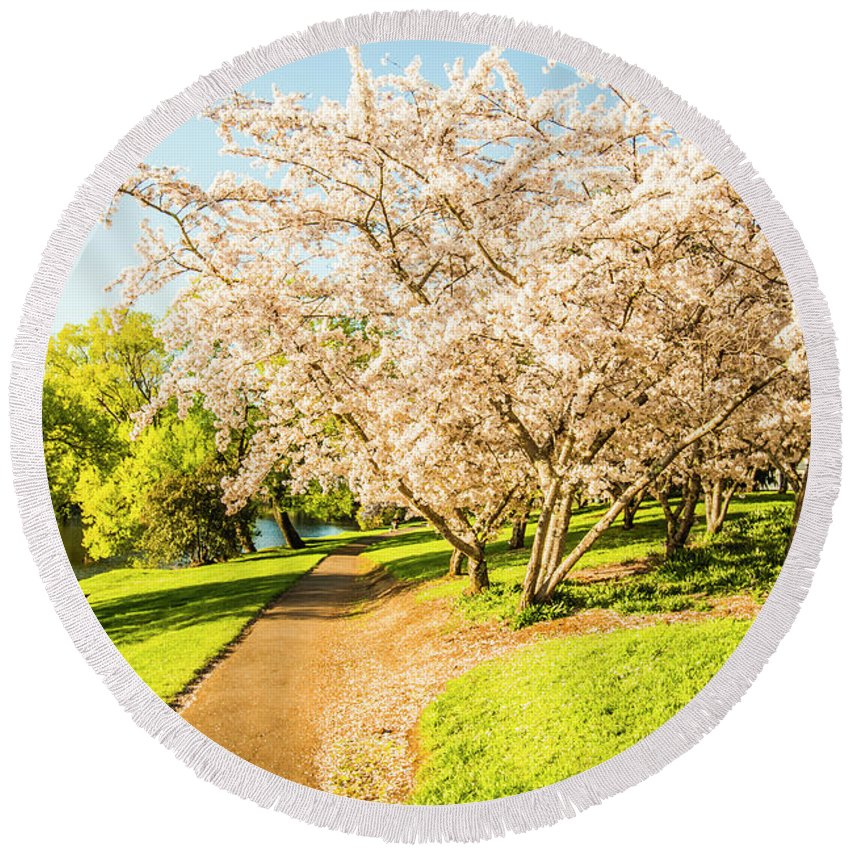 Green Round Beach Towel featuring the photograph Cherry Blossom Lane by Jorgo Photography - Wall Art Gallery