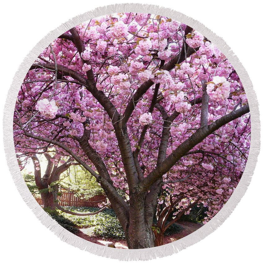 Cherry Blossom Round Beach Towel featuring the photograph Cherry Blossom Wonder by Kendall Eutemey