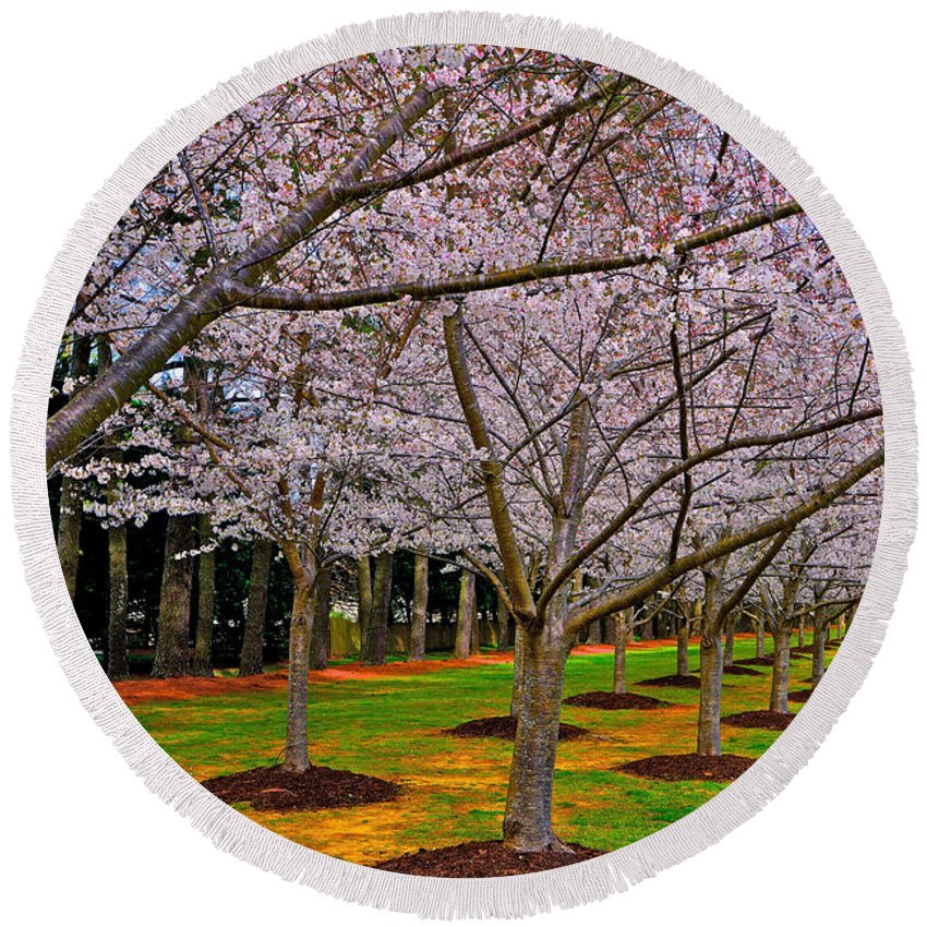 Cherry Blossoms Round Beach Towel featuring the photograph Cherry Blossoms At The Beach by Don Mercer