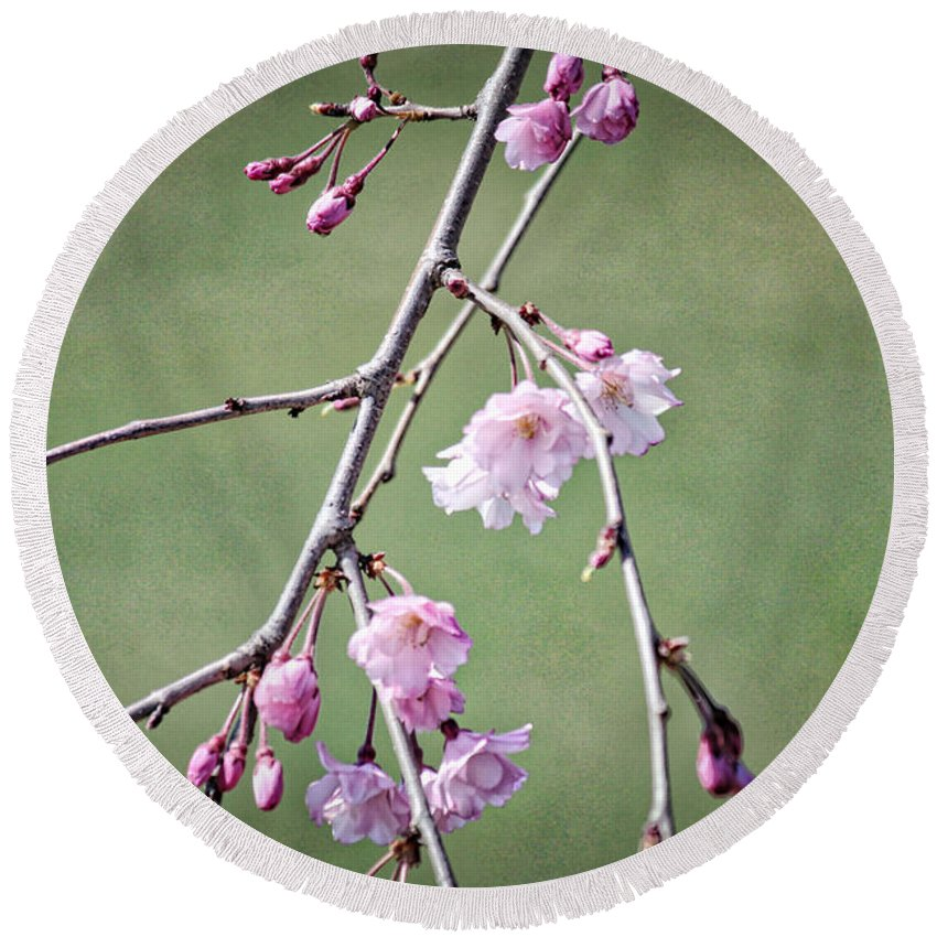 Cherry Round Beach Towel featuring the photograph Cherry Blossoms In Early Spring by Karin Everhart